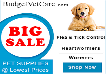 Budget Vet Care Coupons