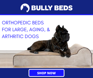 Bully Beds Coupons
